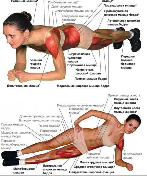 Что является причиной боли в плечах