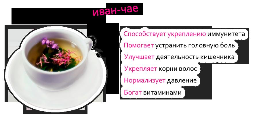 иван-чай2