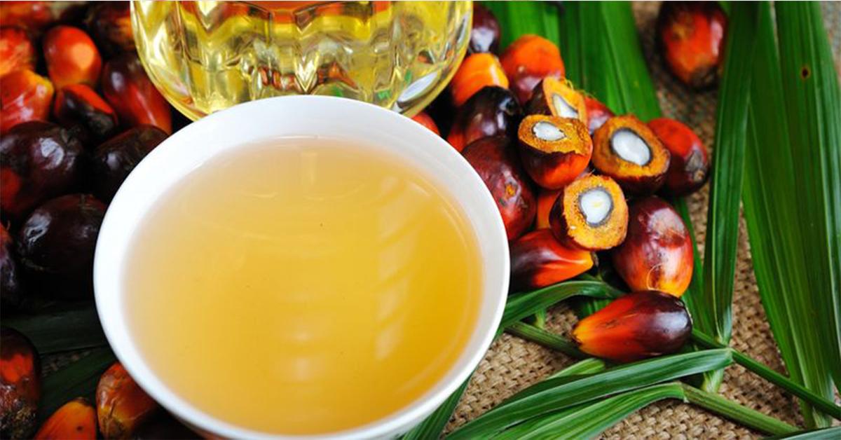 Чем опасно пальмовое масло