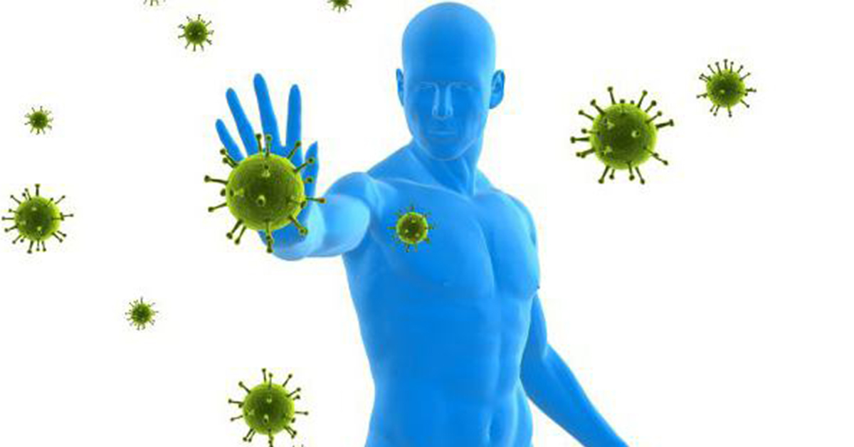 Чем «накормить» иммунитет? 14 продуктов для крепкого иммунитета