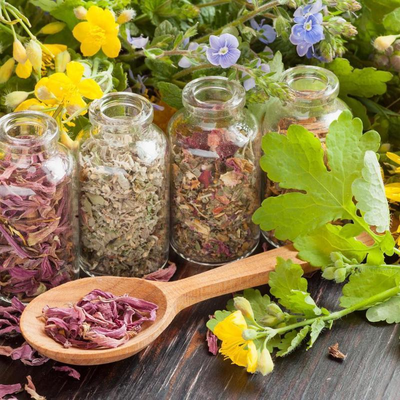растения от глистов рецепты