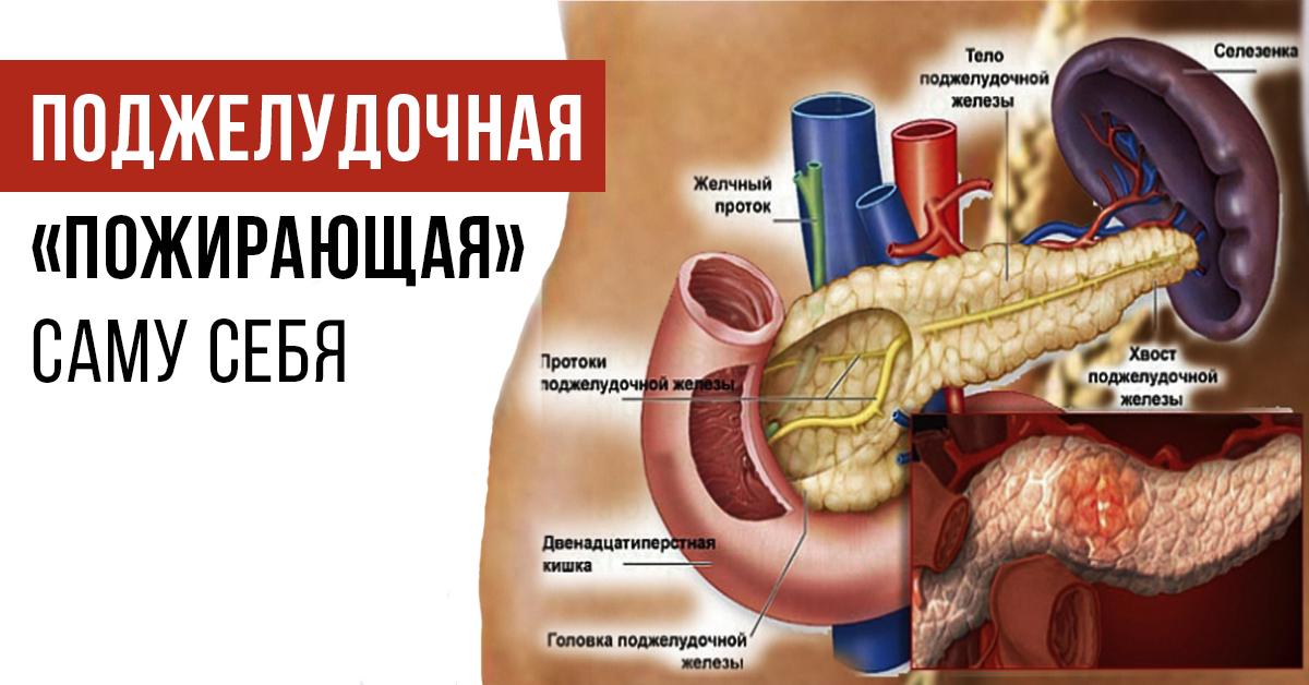Болит поджелудочная симптомы и лечение в домашних условиях