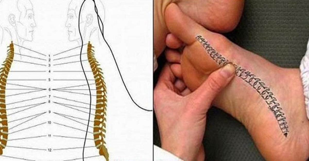 Спина боль в ногеы