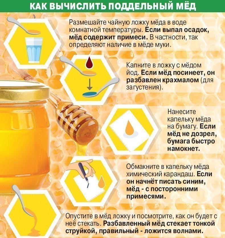 Проверить качество меда в домашних условиях