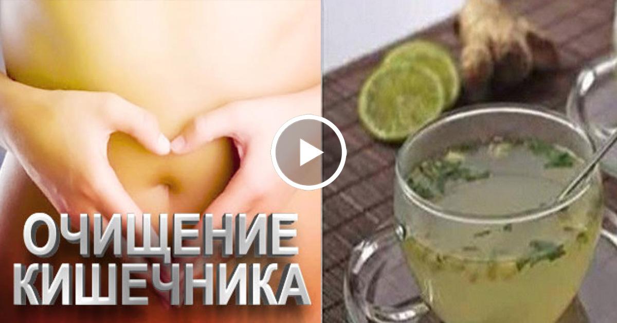 Очищение организма кишечник печень