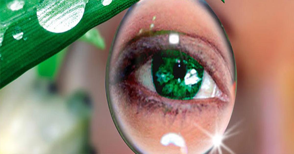 Купить очки для зрения в минске каталог