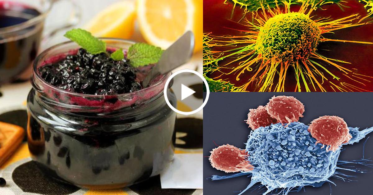 Бузина черная от рака лечение народными рецептами дома